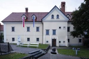 Dolenjski muzej. foto:Arhiv. Dolenjski muzej.